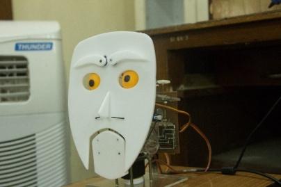 Social Robot IITK